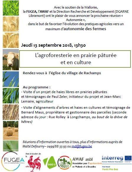 L'agroforesterie en prairie pâturée et en culture !