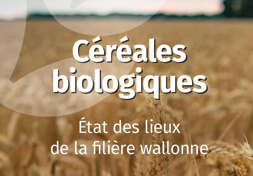 Actualisation de l'état des lieux de la filière céréales biologiques