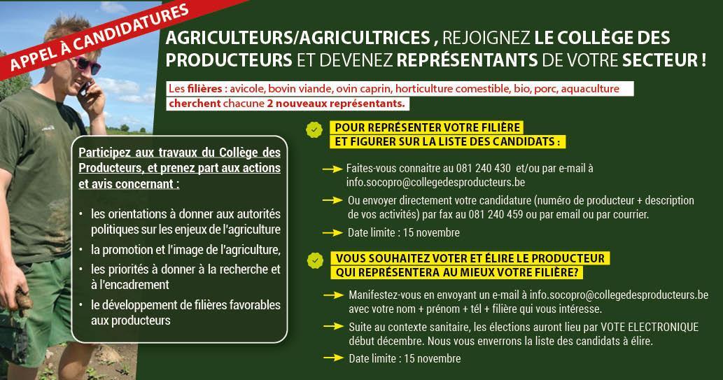 Elections de producteurs-représentants au sein du Collège des Producteurs : appel à candidats et aux votants