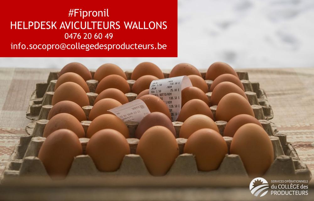 Fipronil : helpdesk pour les aviculteurs wallons