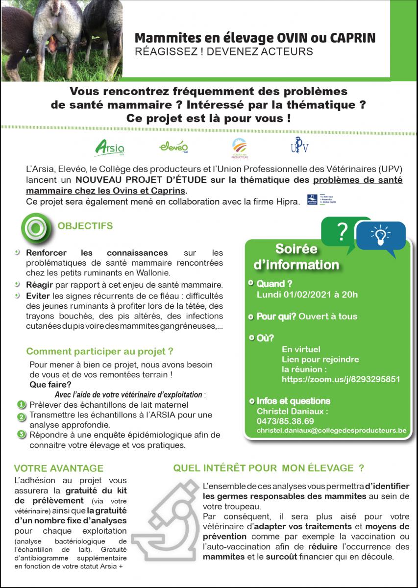 Mammites en élevage ovin et caprin : nouveau projet d'étude et soirée d'information le 01/02