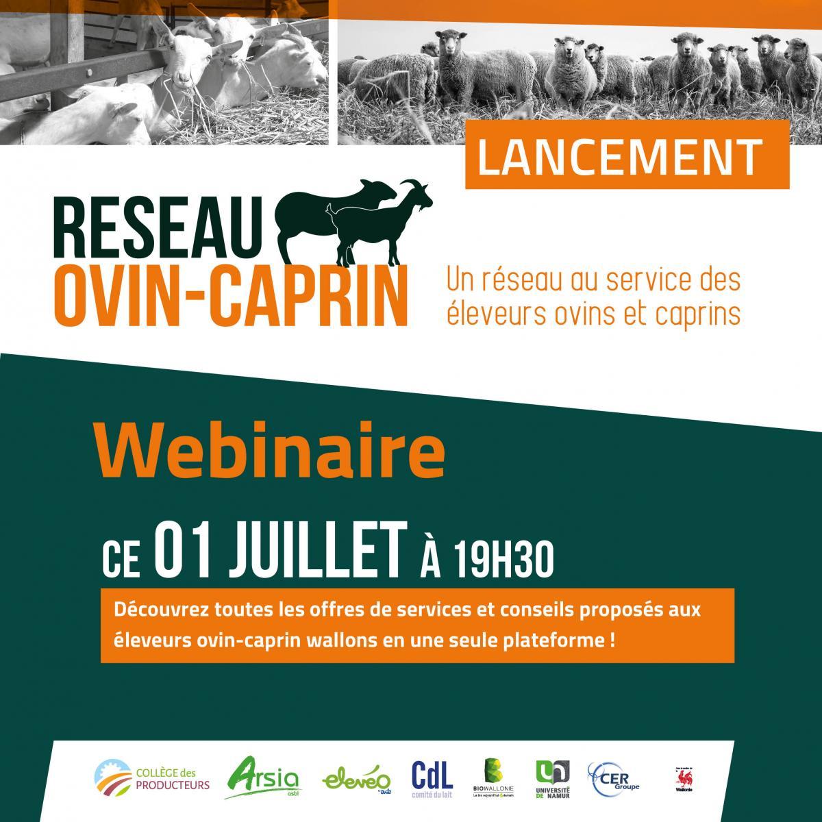 Invitation aux éleveurs ovins et caprins : le 1er juillet à 19h30